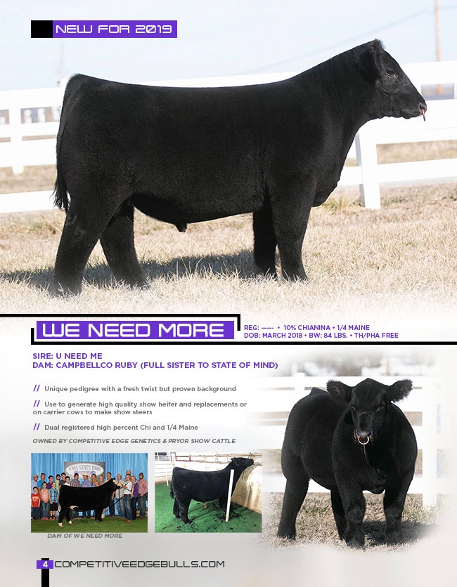 Emmerson Show Cattle – Kansas | Competitive Edge Genetics